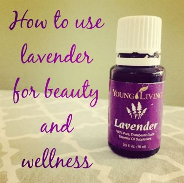 LavenderEO
