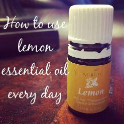 LemonEO